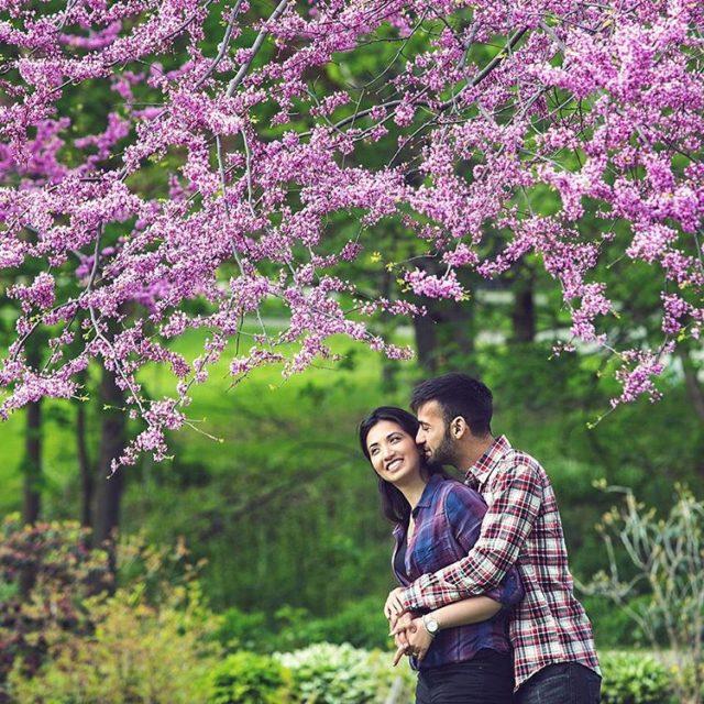 Blossom in springdaphotostudio
