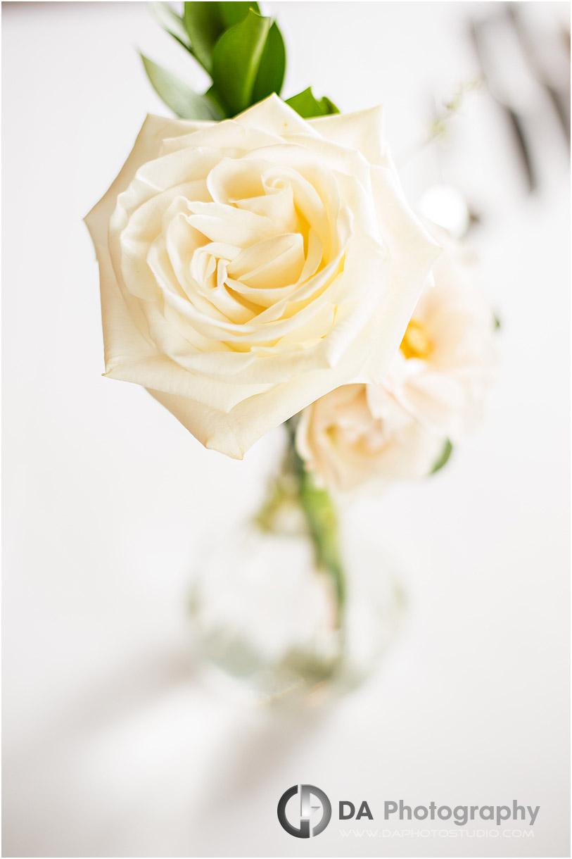 Cambridge Wedding Reception