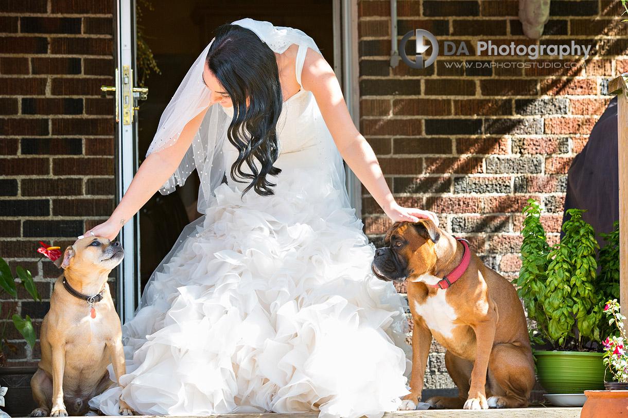 Best Wedding Pictures in Stoney Creek