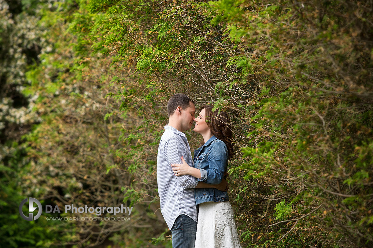 Oakville Engagement Photos in the forest