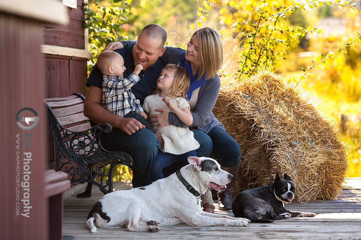 Family Session with dogs in Sutton