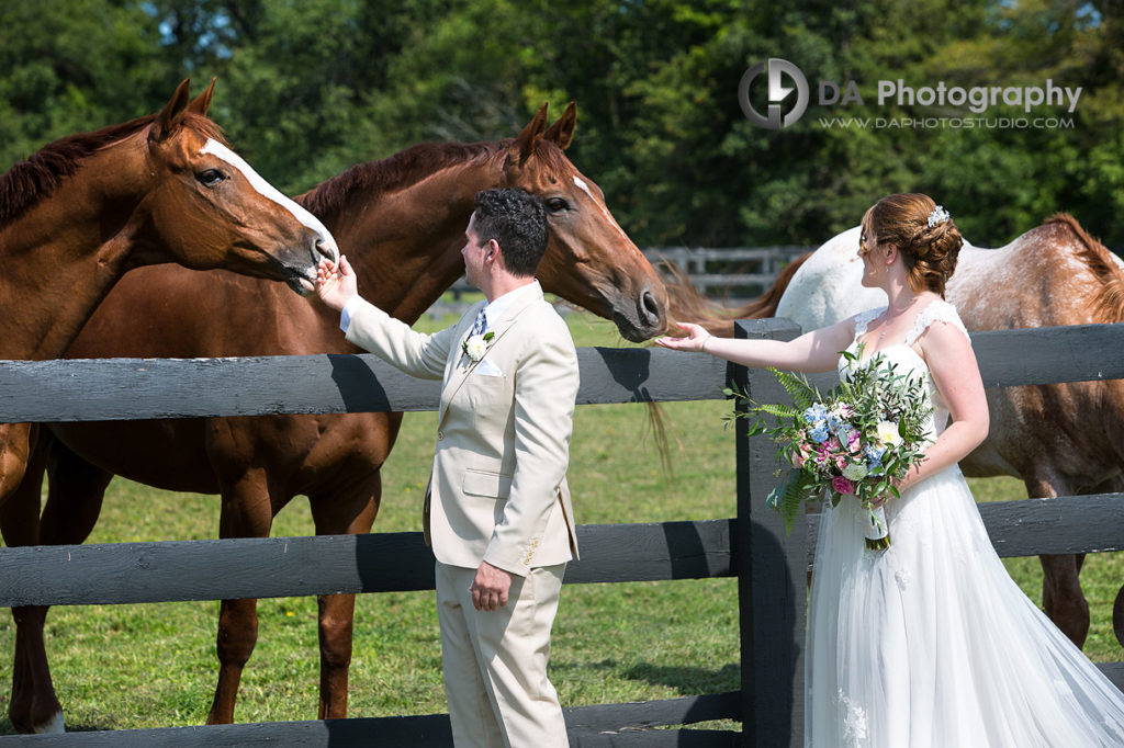 Parish Ridge Stables Wedding