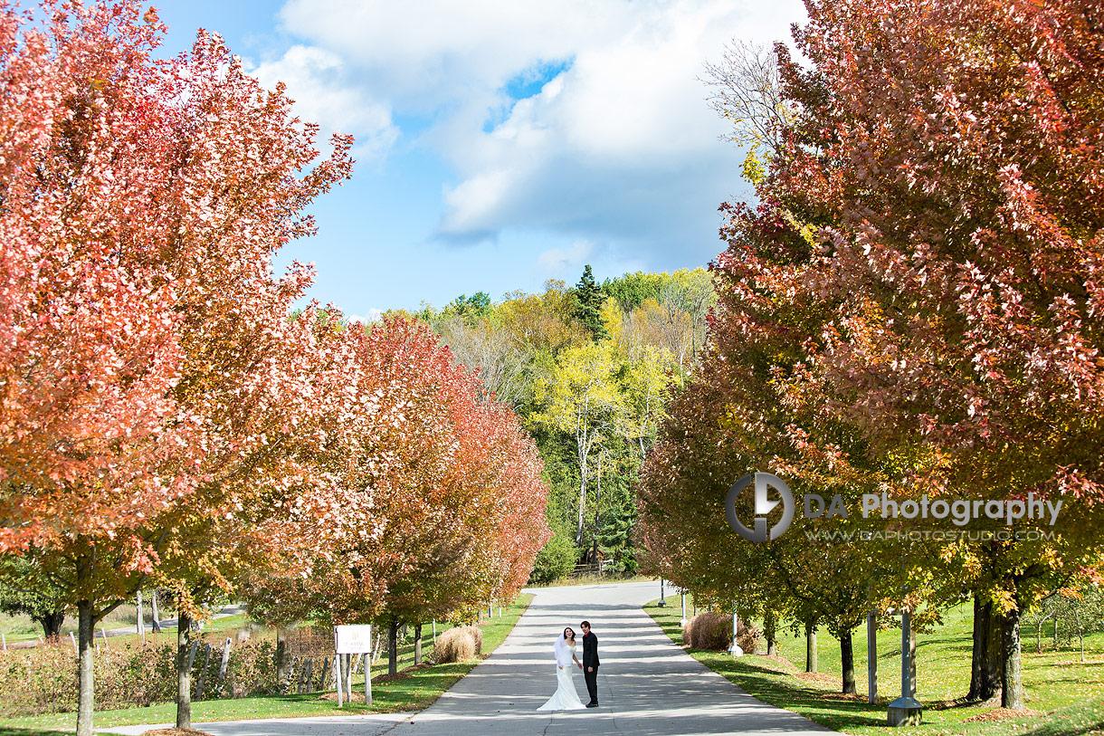 Wedding Photo at Hockley Valley in Orangeville