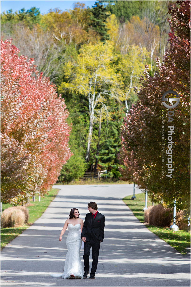 Hockley Valley Photographs