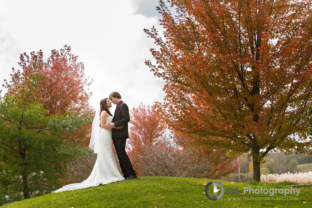 Hockley Valley Wedding