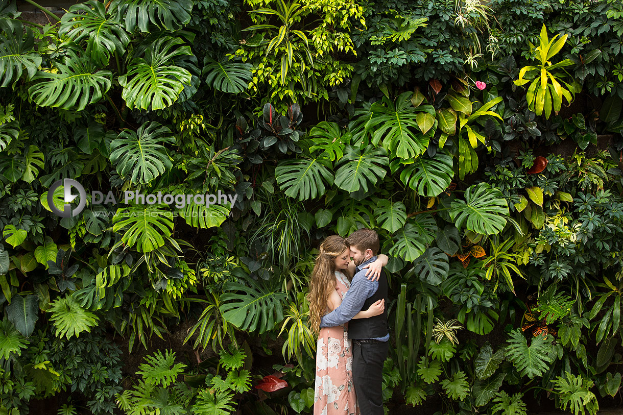 Engagement Photography at Royal Botanical Gardens