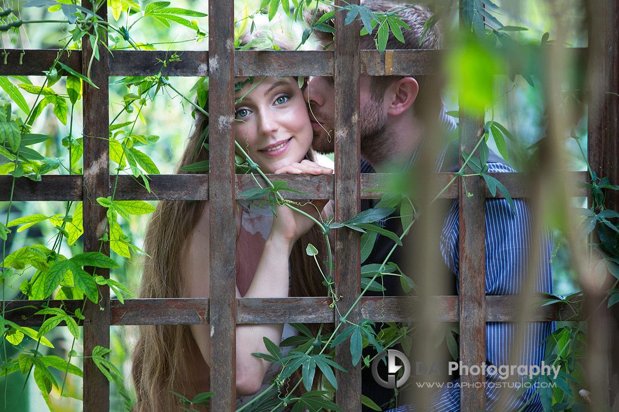 Green House Engagement Photos at Royal Botanical Gardens