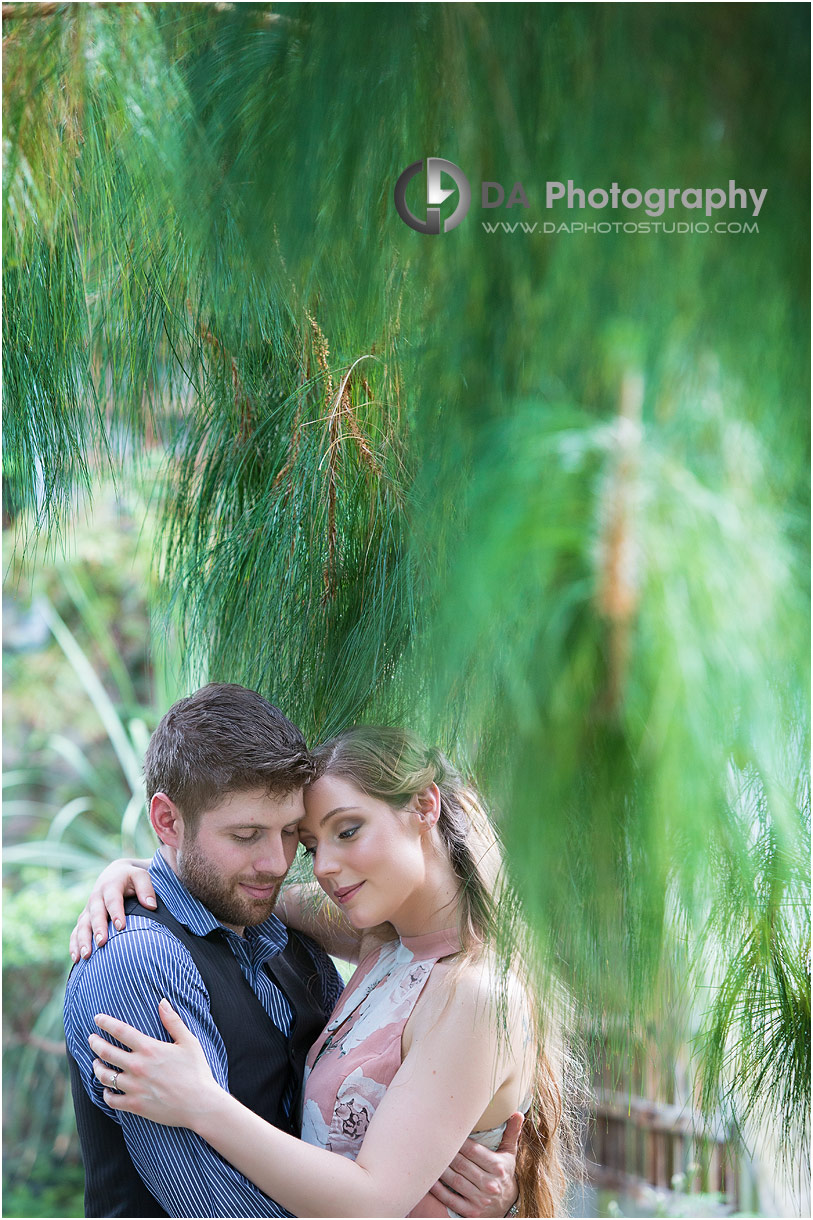 Green House Engagement Pictures at Royal Botanical Gardens