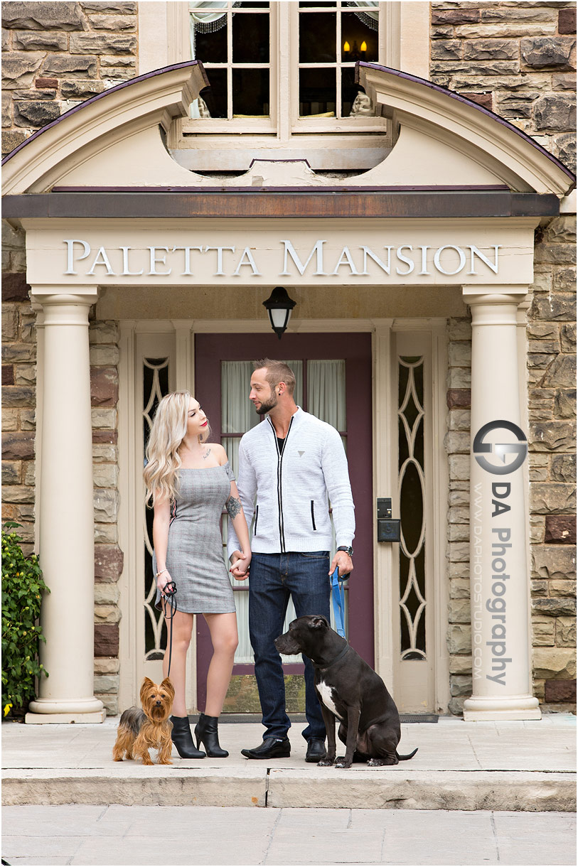 Casual engagement photos with dogs