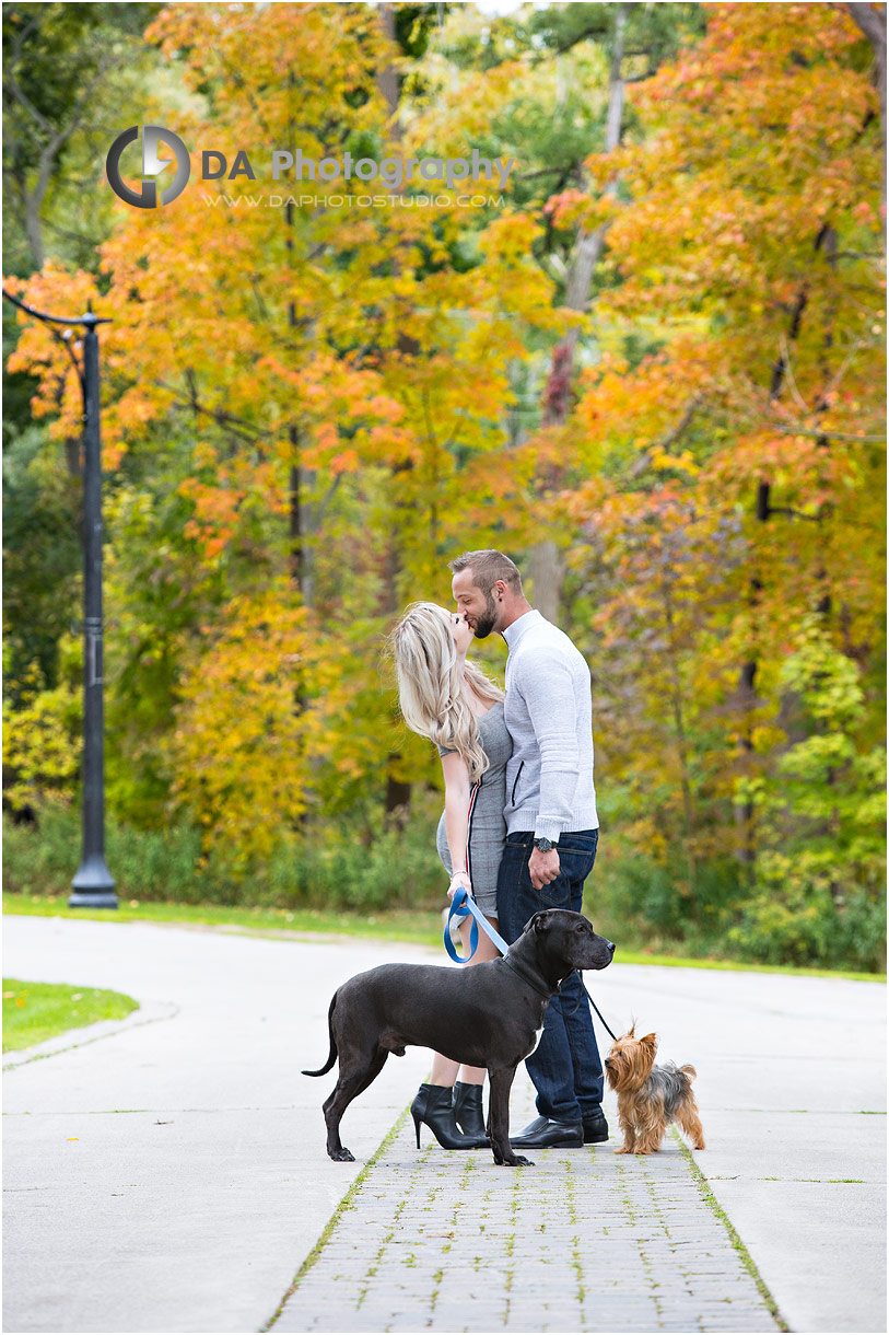 Engagement photo with dogs at Paletta Manson