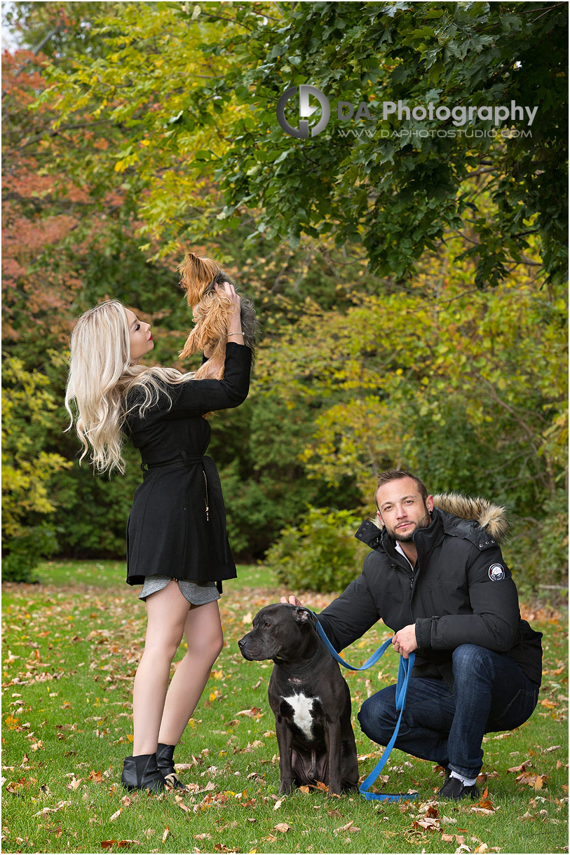 Engagement photos with dogs in Burlington