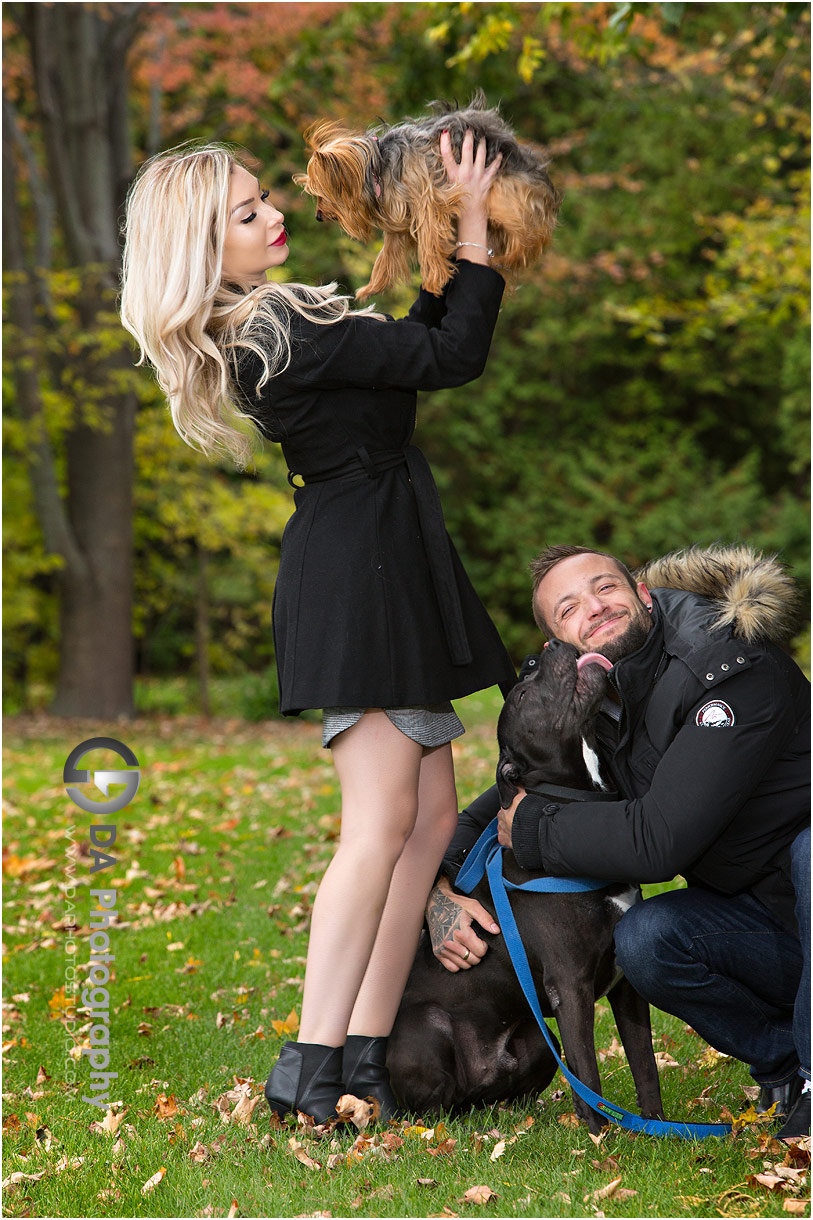 Fall engagement photos with dogs