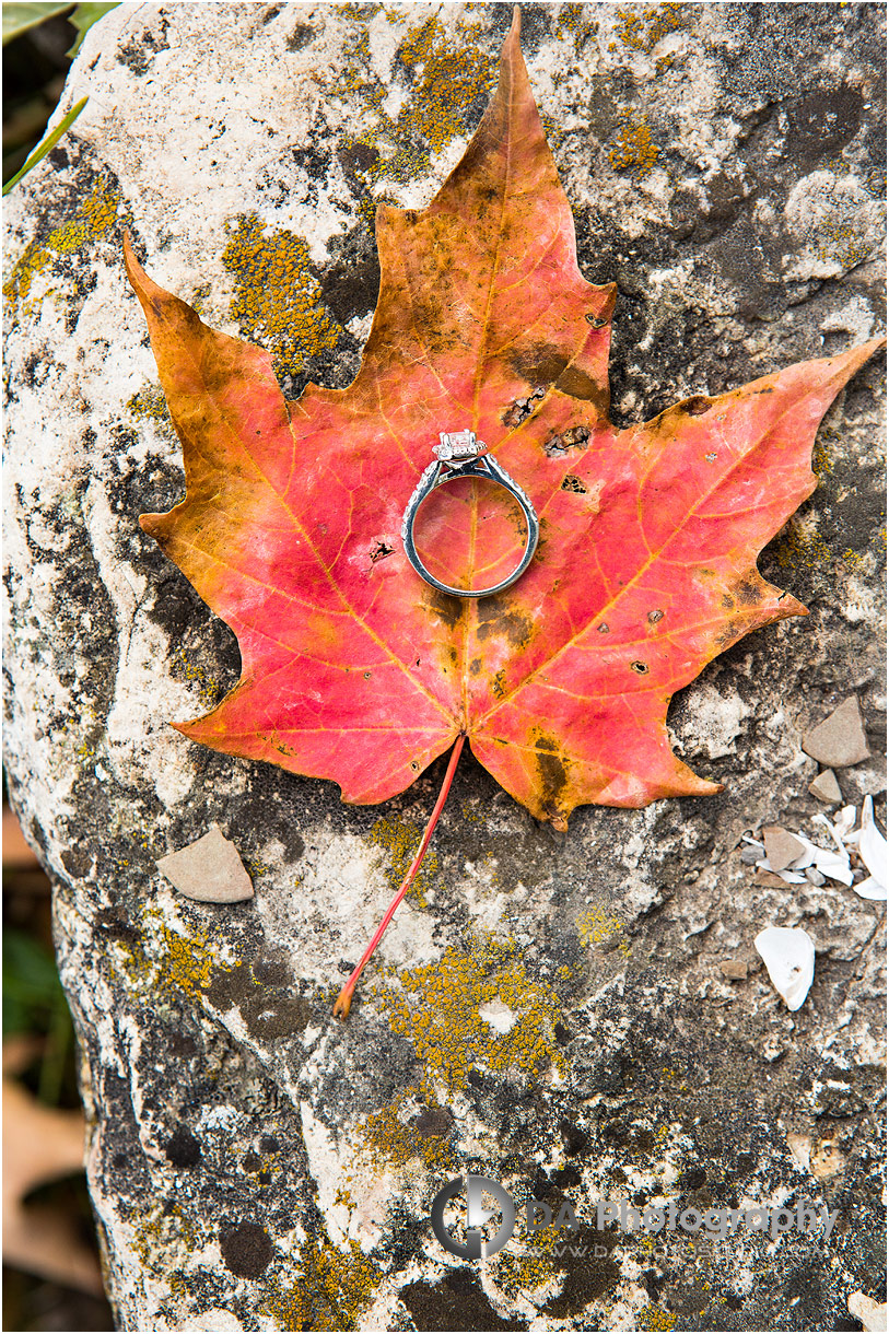 Engagement ring photo in Fall