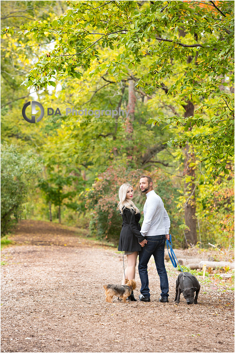 Engagement photos with dogs in a forest