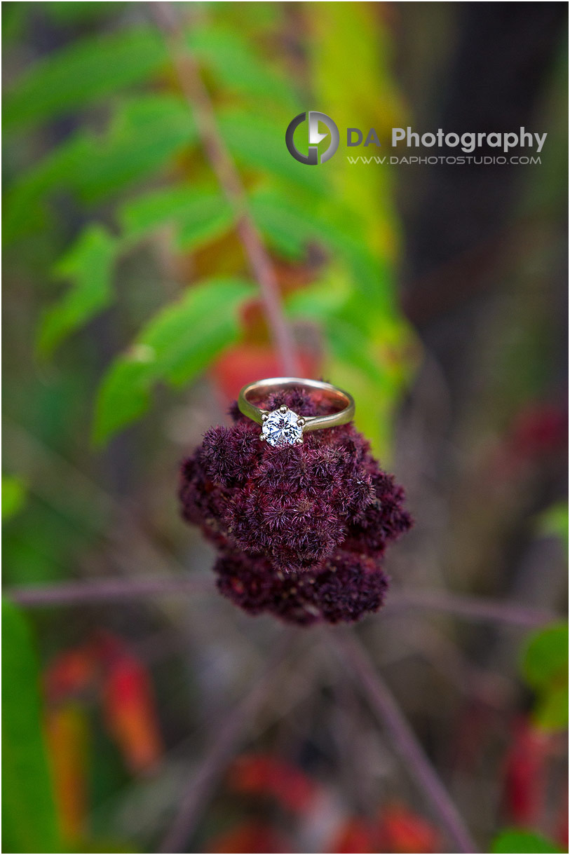 Top Engagement Photographers in Guelph