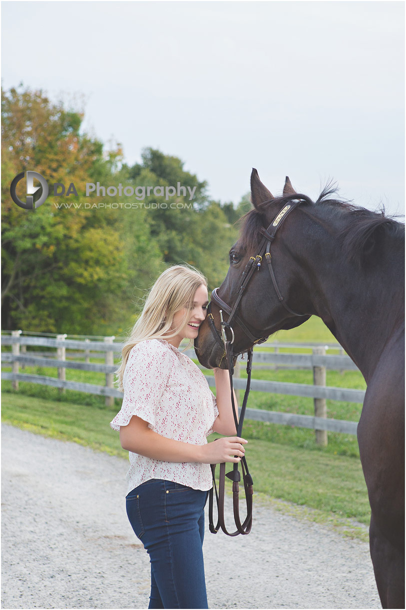 Horse Stable Photographs