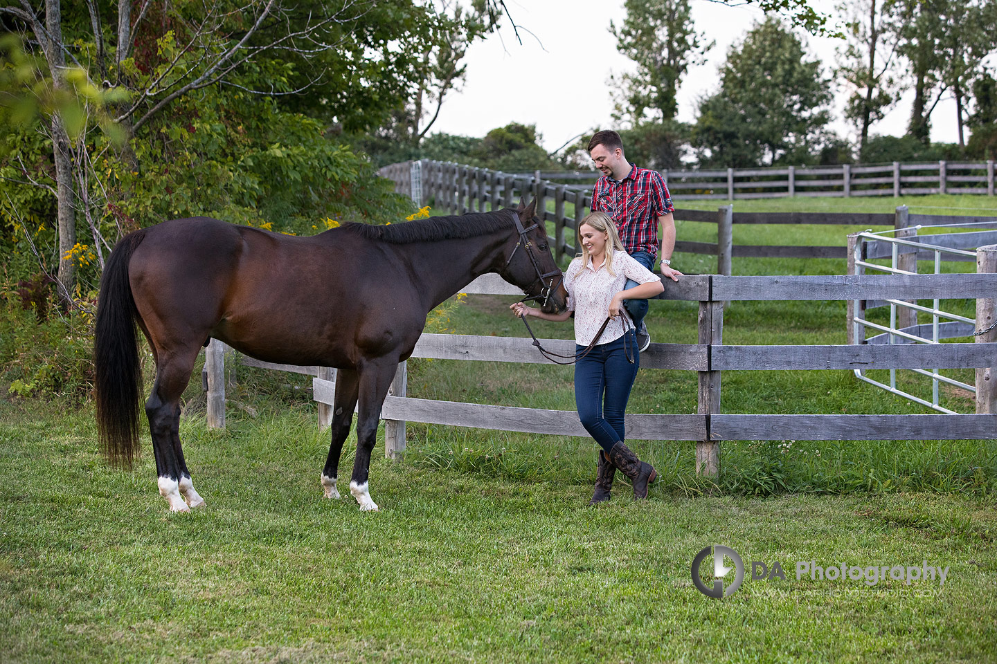 Horse Stable Engagements in Milton