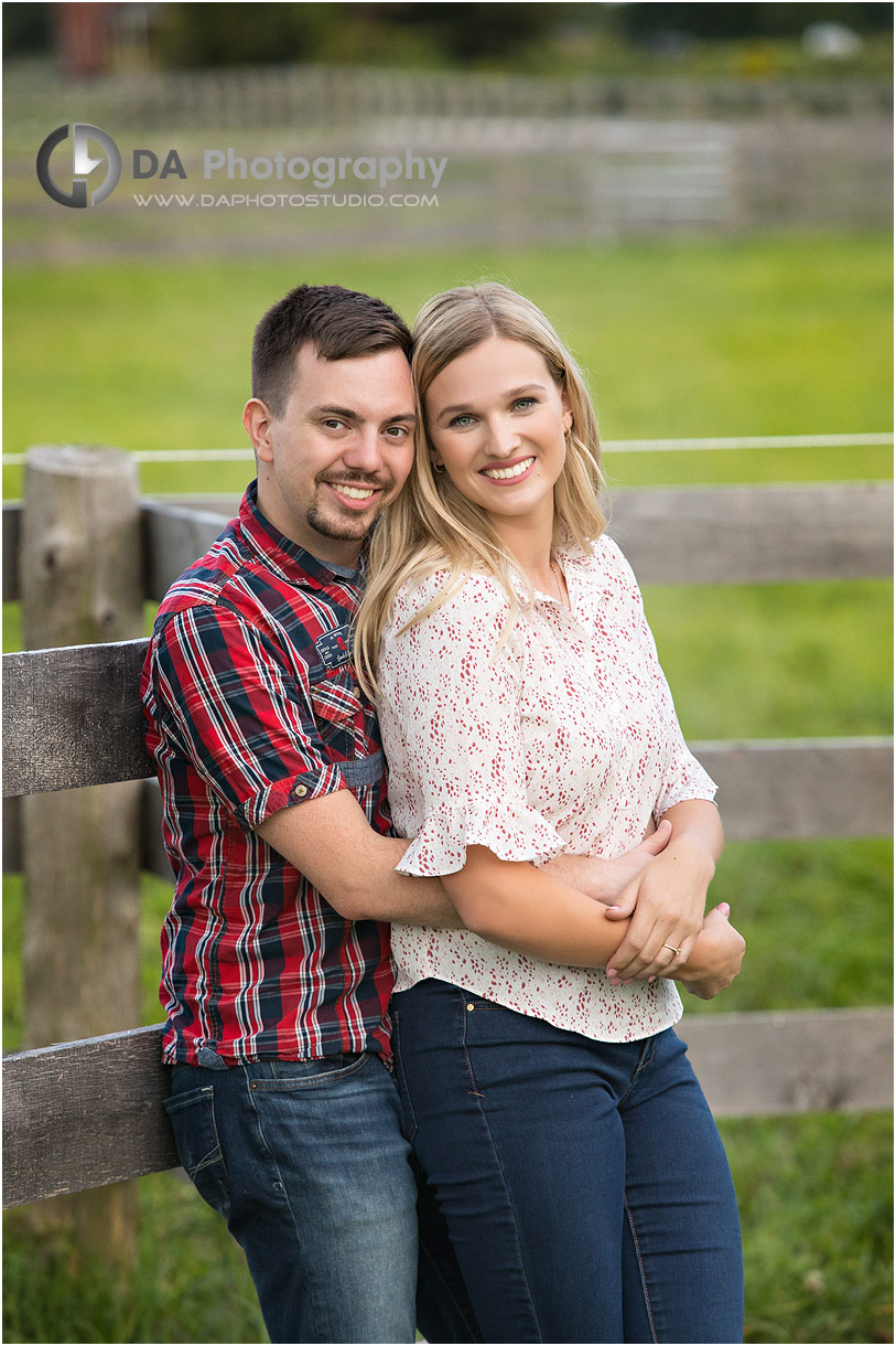 Horse Stable Engagement in Milton