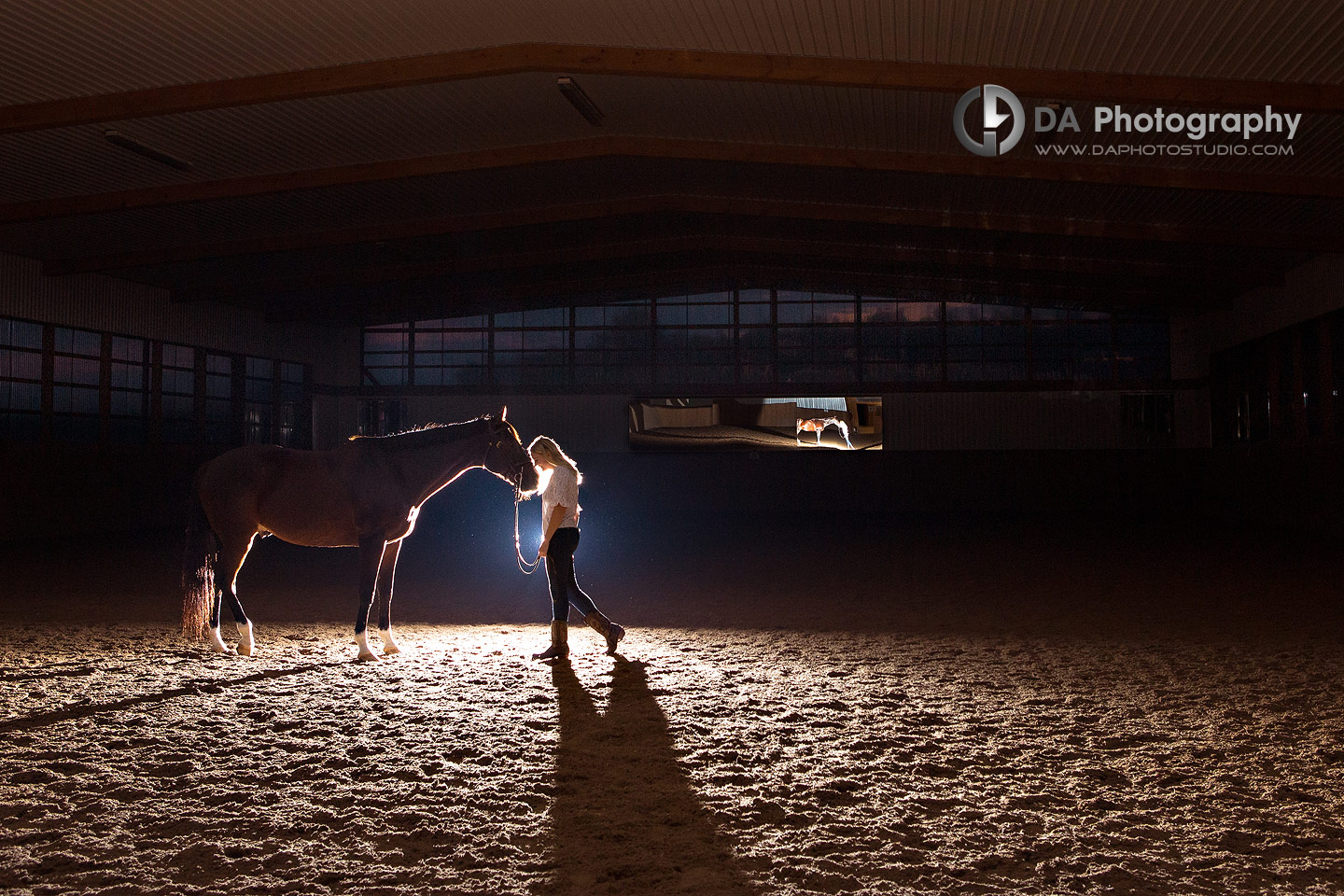 Engagement at Horse Stable