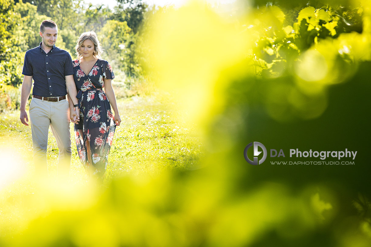 Gallucci Winery Engagement