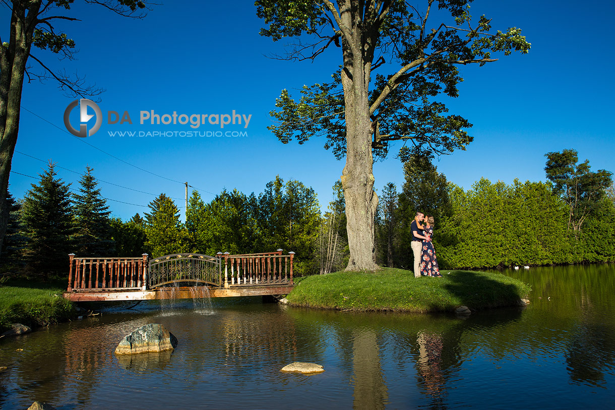 Engagement Photographers for Gallucci Winery