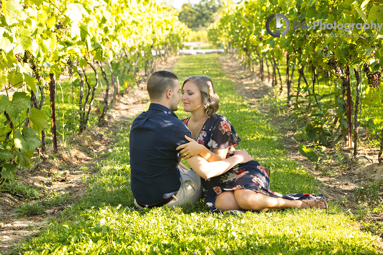 Engagement Photographs at Gallucci Winery