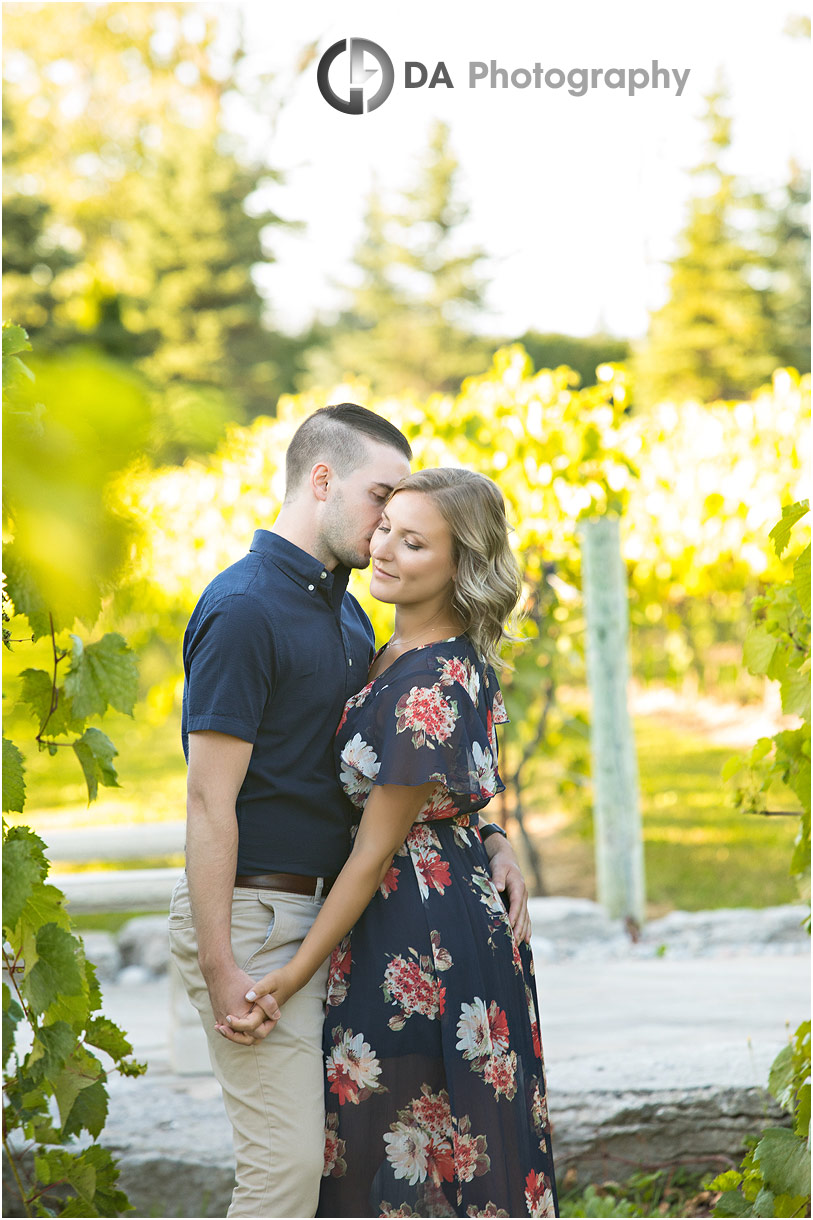Gallucci Winery Engagement in Whitchurch-Stouffville