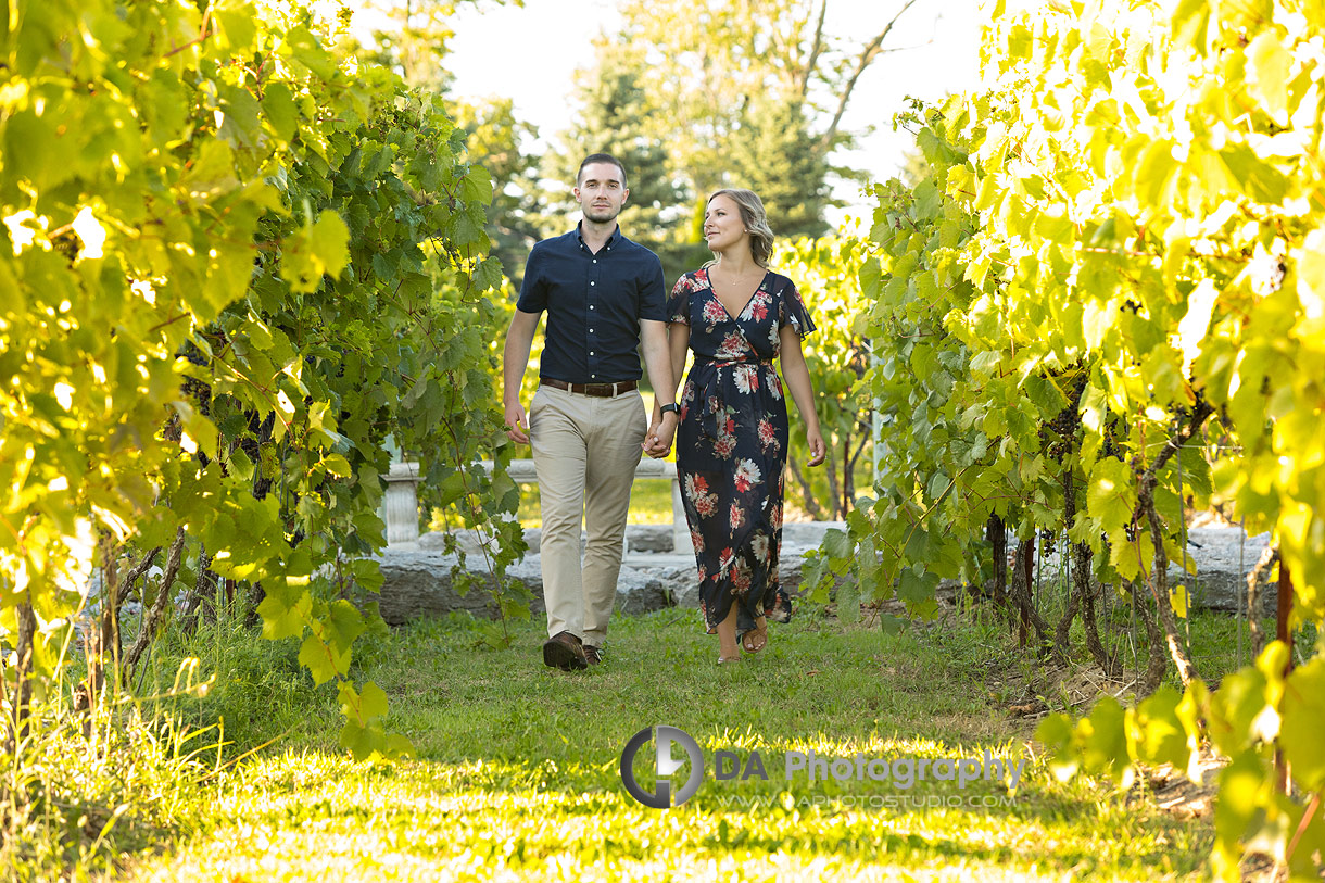 Engagement at Gallucci Winery