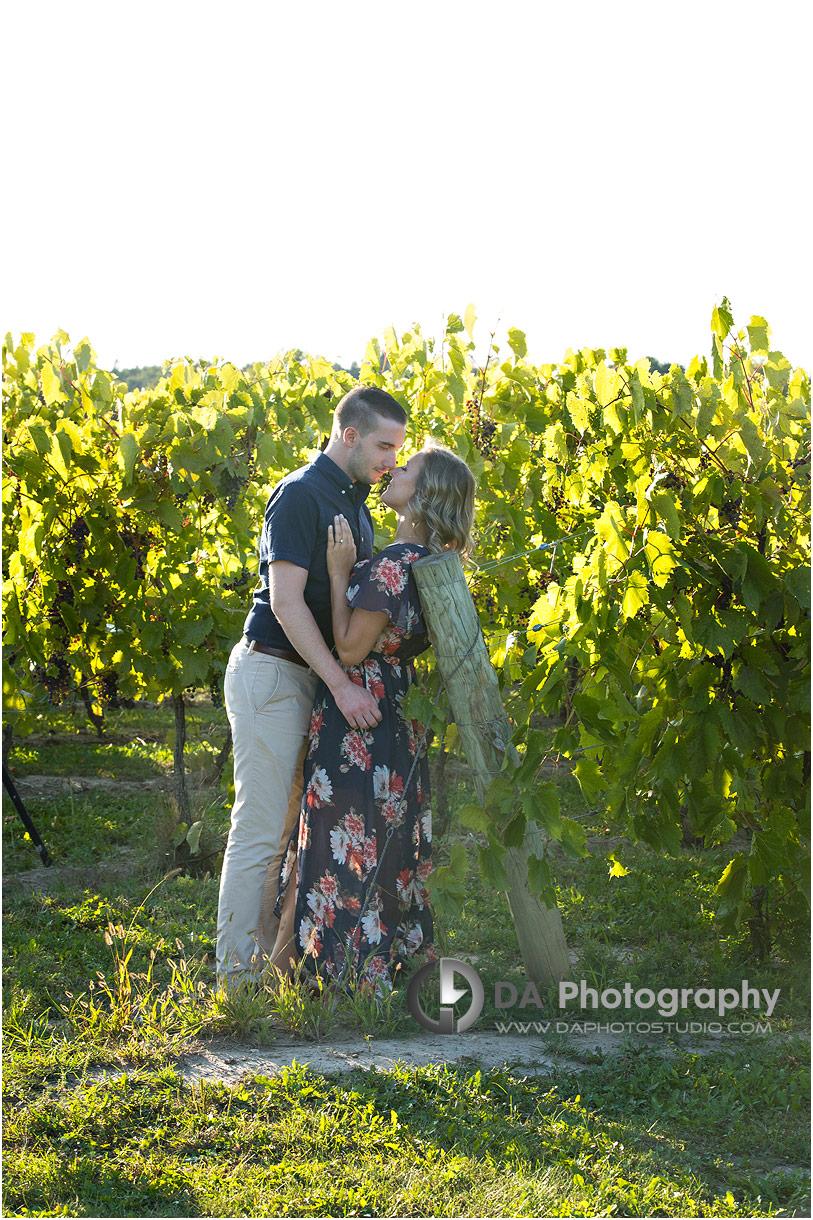 Gallucci Winery Garden Engagement