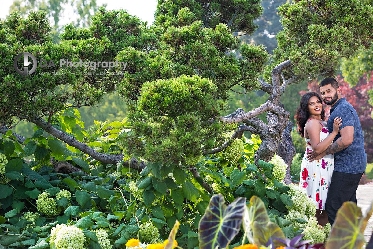 Best engagement photographer at Gairloch Gardens