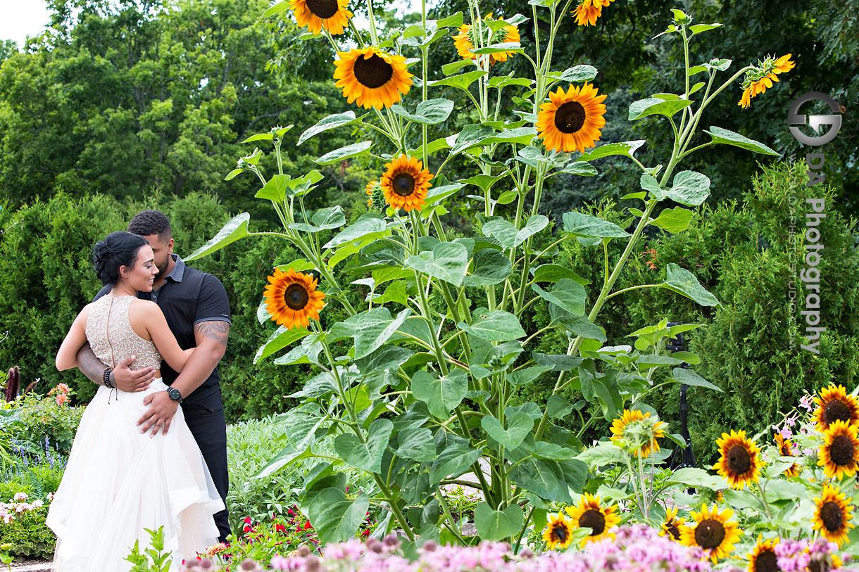 Burlington Hendrie Park Engagements