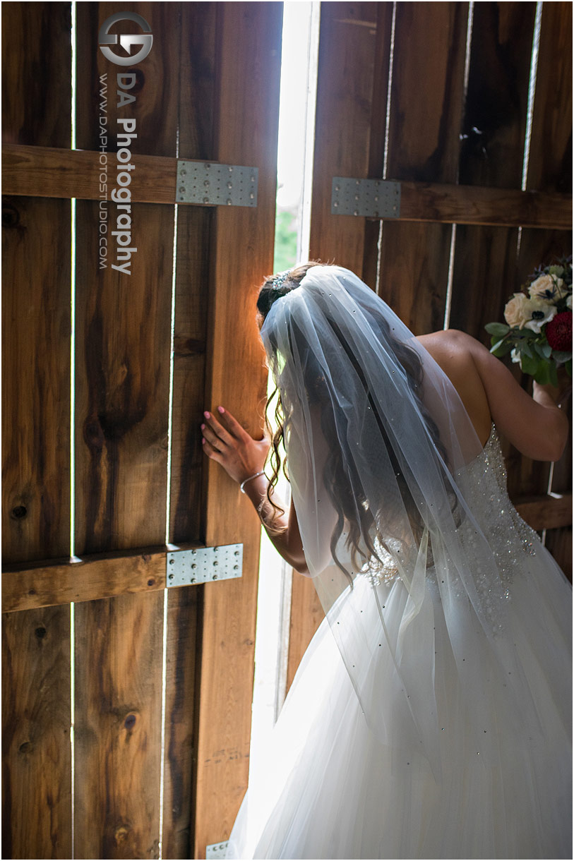 Bride at Tutela Heights Farm