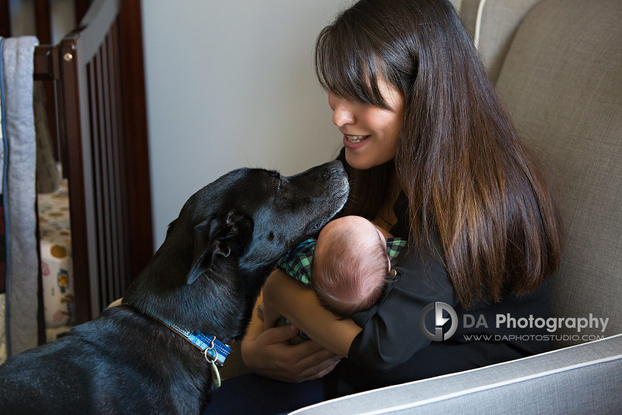 Port Dover lifestyle family photography with dogs