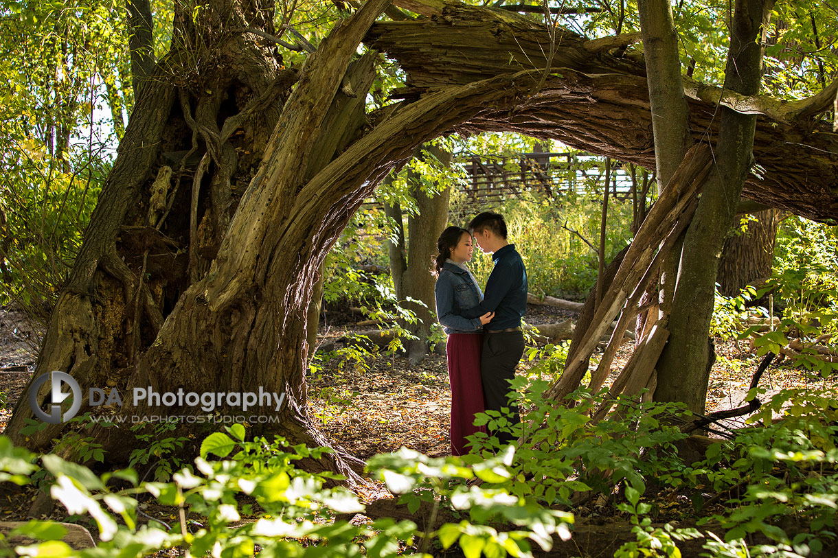 Paletta Mansion Fall Engagement