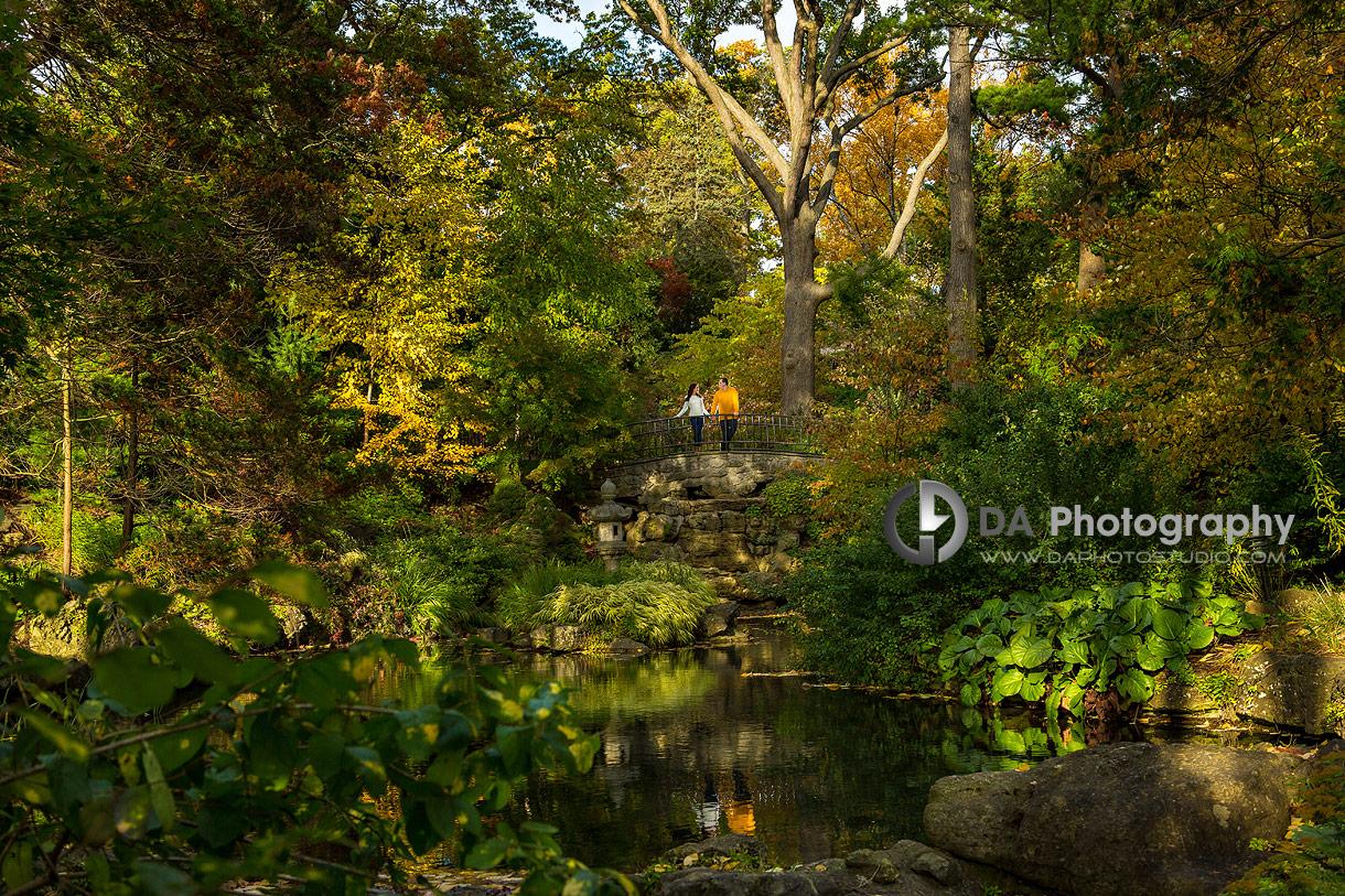 High Park Photographs