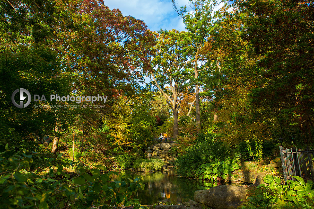 Engagement Photographers for High Park
