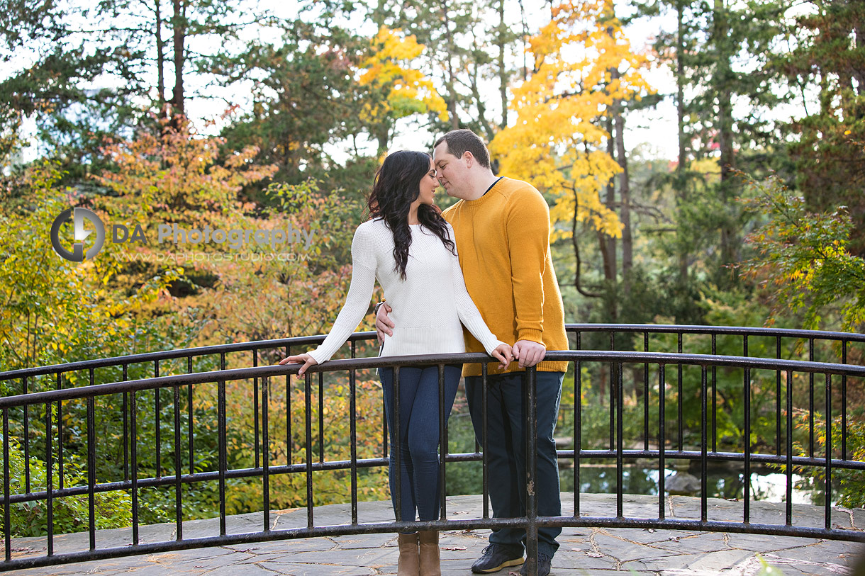 Engagement Photos at High Park in Toronto