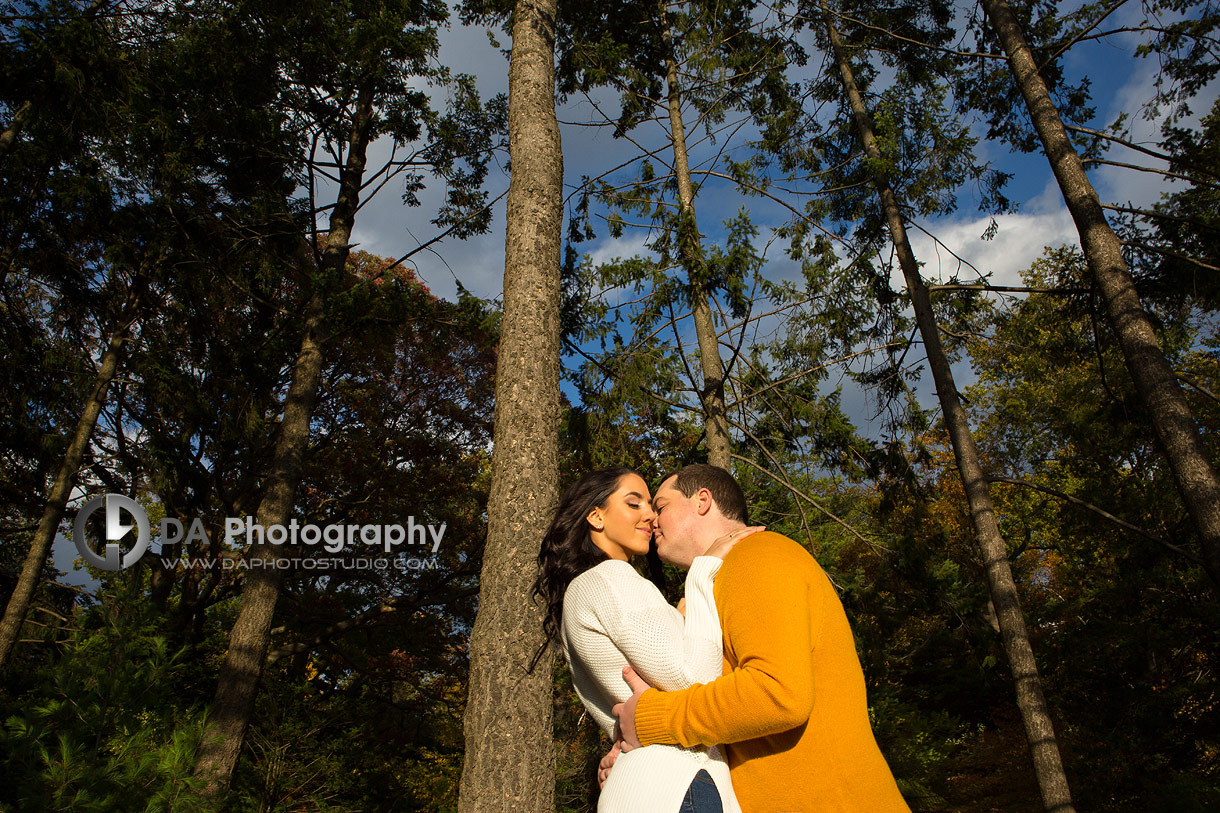 Engagement at High Park in Toronto