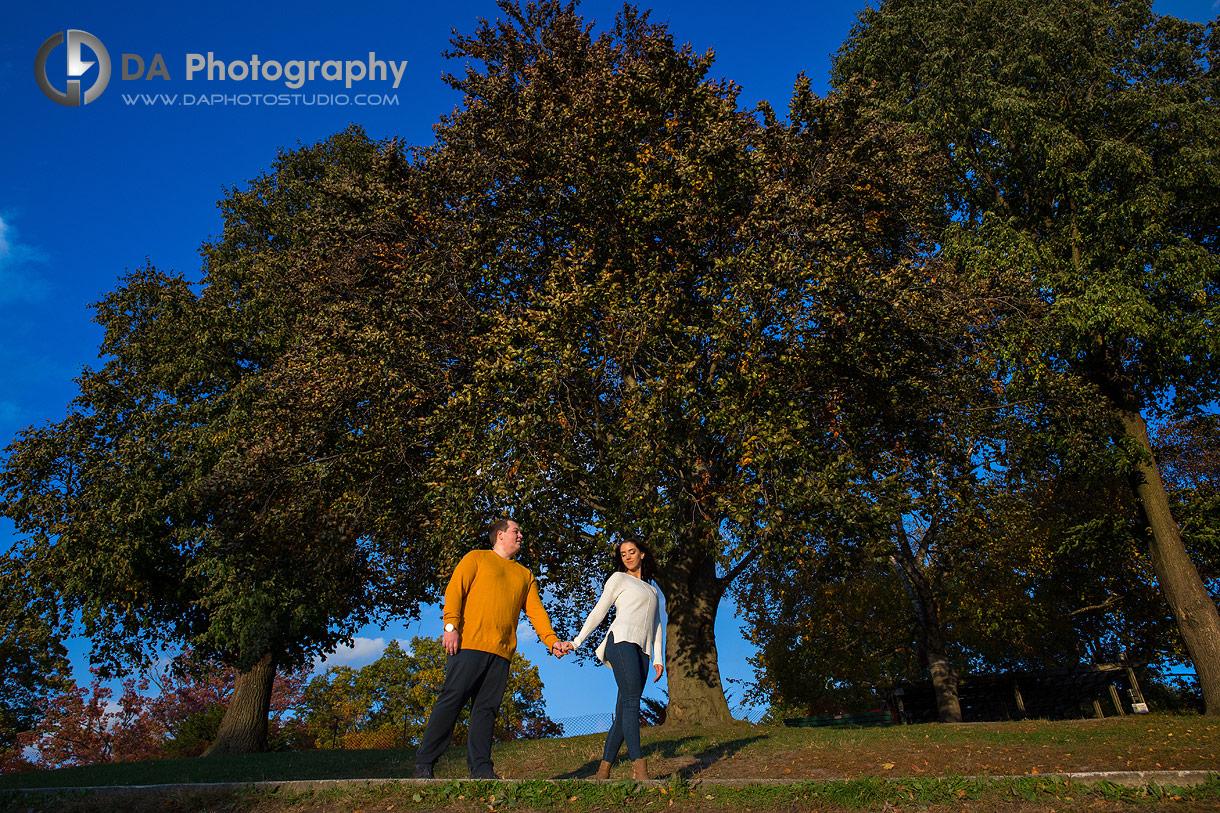 Golden Hour photos at High Park