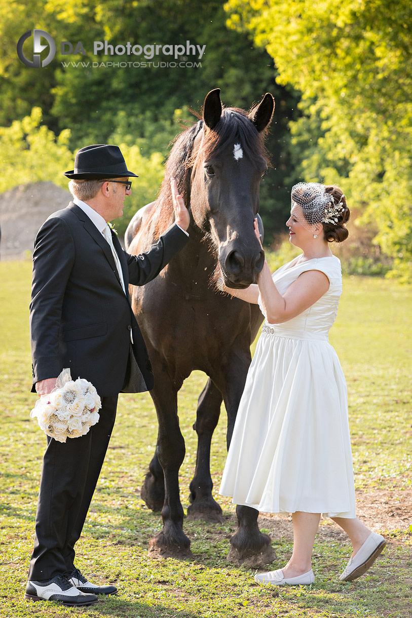 Ayr Wedding Photos