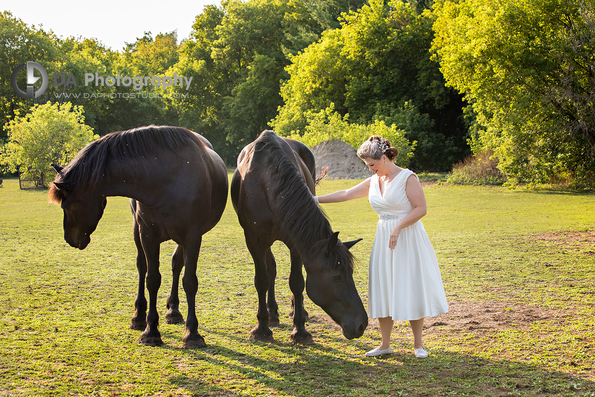 Photos of Bride with horses at NithRidge Estate in Ayr