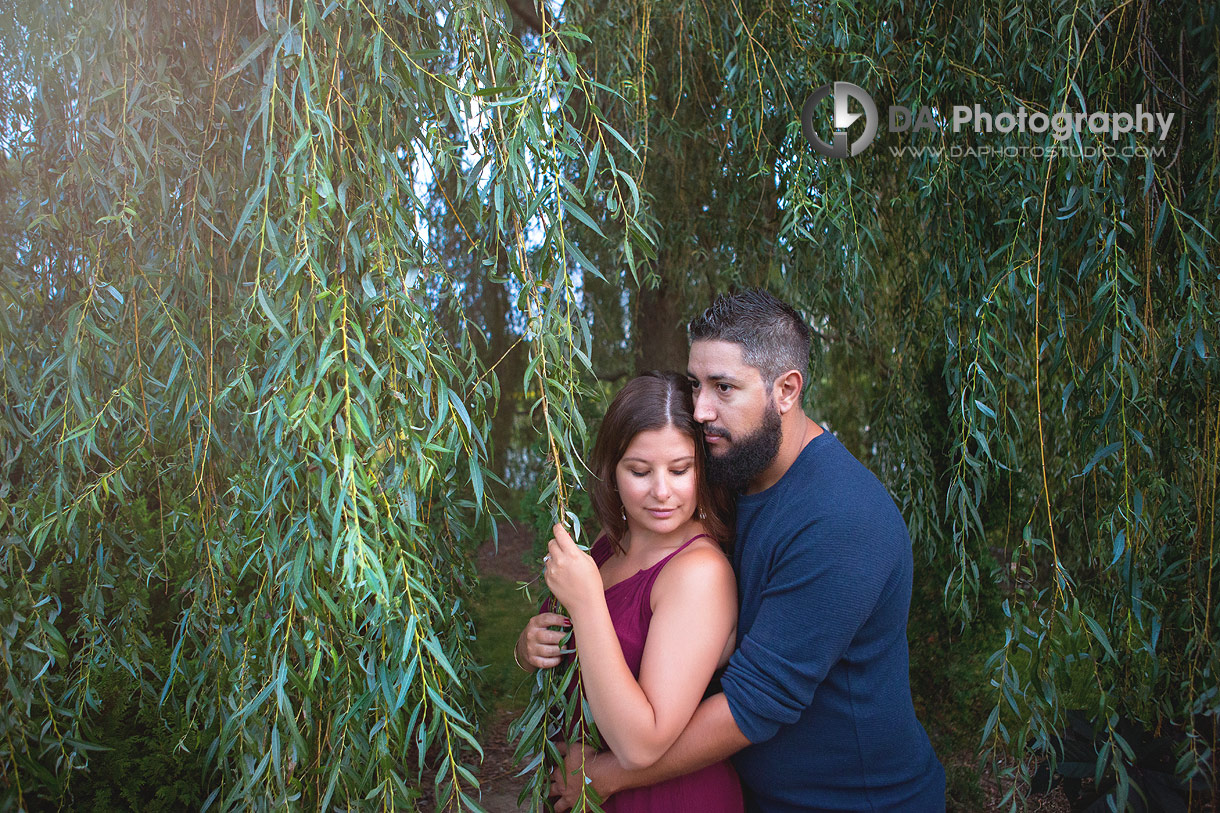 Top engagement photographers for Whistling Gardens