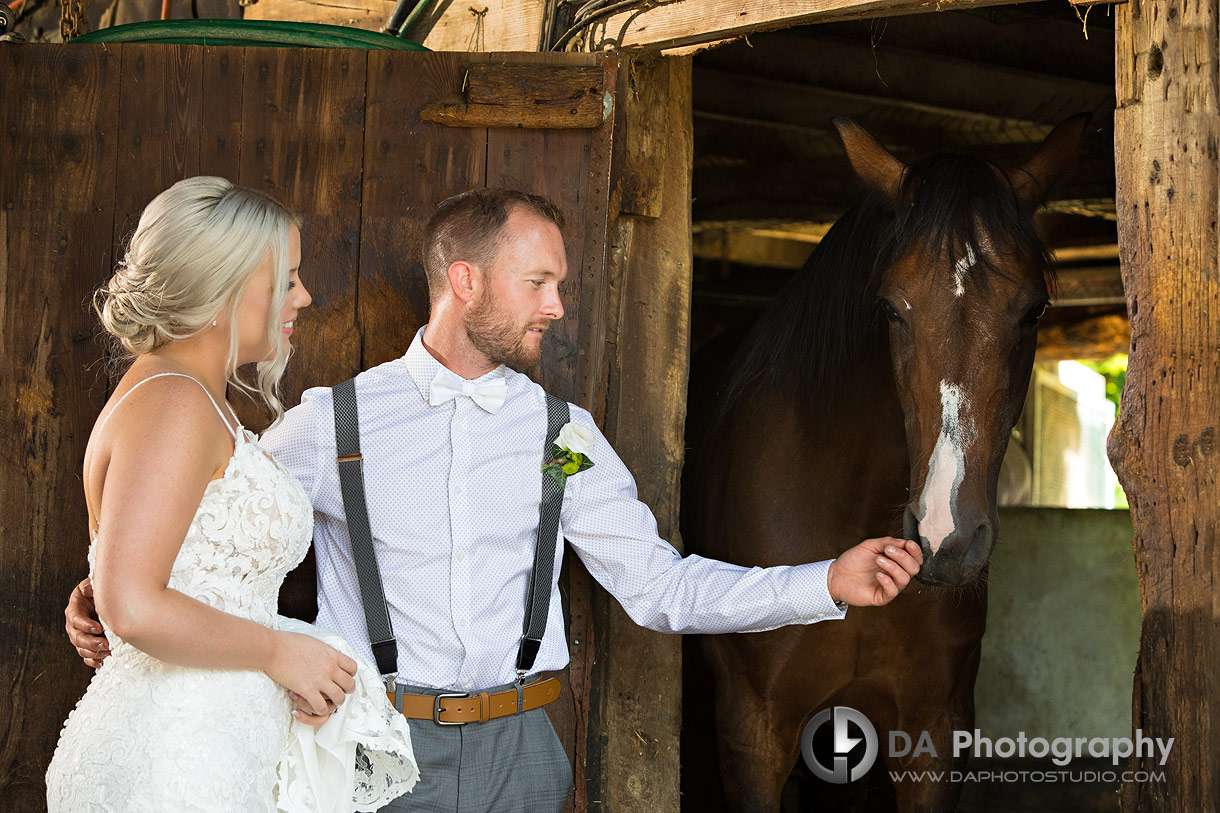 Vintage Barn Wedding in Brantford