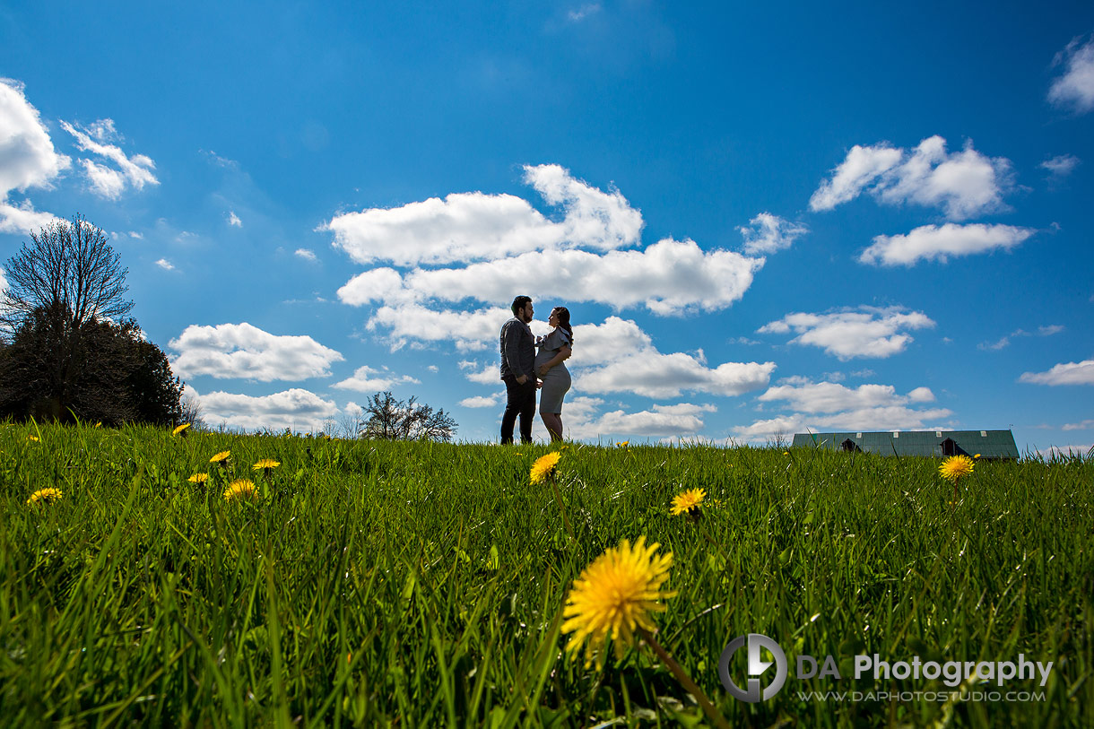 Country Heritage Park engagement in Spring