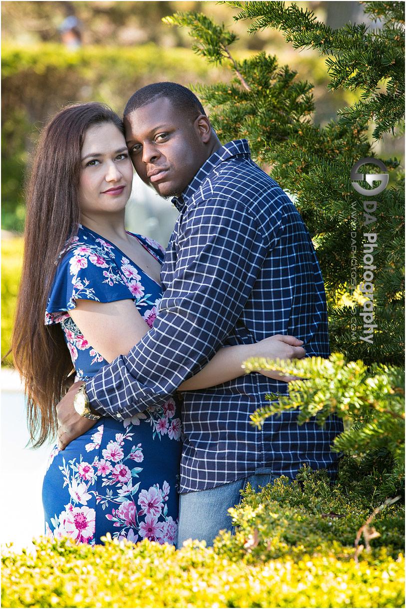 Engagement photos at High Park